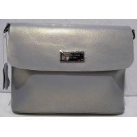Женский кожаный классический клатч (серебряный) 19-02-012