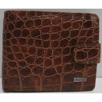 Мужской кошелёк Cantrol (коричневый) 19-03-012