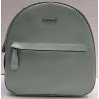 Женский кожаный рюкзак Alex Rai  (мятный) 21-03-039
