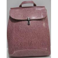 Городской глянцевый  рюкзак   19-04-014