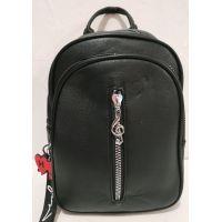 Женский городской рюкзак (чёрный) 19-07-008