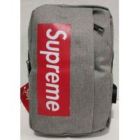 Тканевая спортивная сумка через плечо с USB (серая) 19-09-006